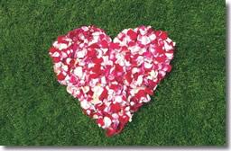 NutriLawn Rose Petals