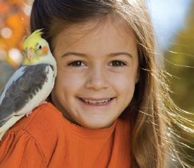GDay Bird