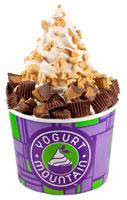 Yogurt Mountain Reeses