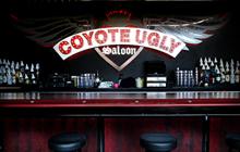 Coyote Ugly Saloon 2