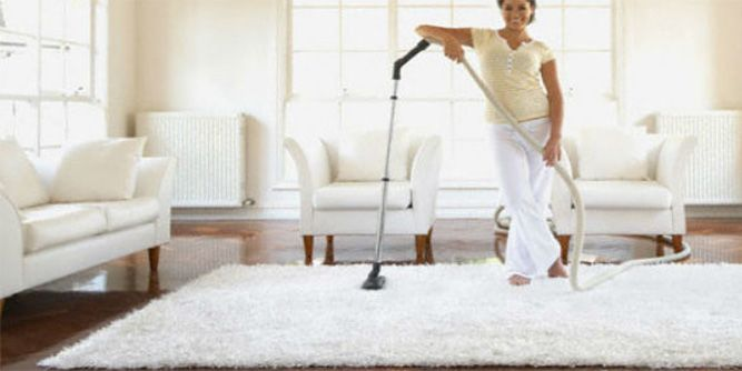 Best Deal Steam Carpet Cleaning Franchise Costs And