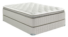 Mattress By Appointment Business Opp